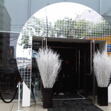 Events & Staging - Disco Ball Custom Event Entrance | Unit 11